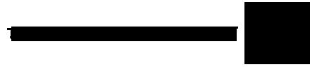 TheDigitalMoments.com Logo